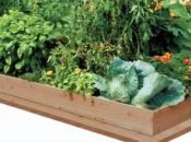 contenitore-in-legno-per-orticoltura