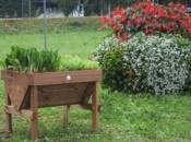 foto-vasca-orticoltura-in-legno