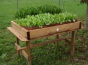 vasca-per-contenitore-in-legno-per-orticoltura
