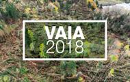 VAIA - 2018. Articoli ricavati dagli alberi schiantati dalla tempesta VAIA